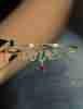14 Ayar Altın Taşlı Kalp Detaylı Asimetrik Love Bileklik - Thumbnail